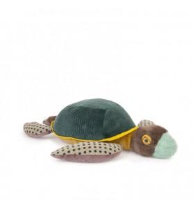 Grande tortue Tout autour...