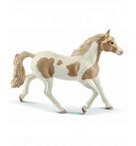 Jument Paint Horse