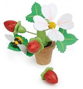Pot de fleurs avec fraises