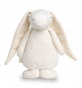Moonie le lapin magique...