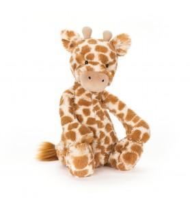 Girafe bashful small